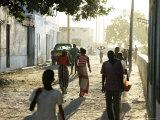 Tree Lined Streets of Ilha De Mozambique