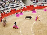 Bullfight at Placa De Braus Monumental  Barcelona  Spain
