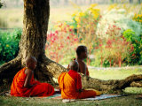 Buddhist Monks at Meditation under Tree