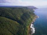 Aerial of Great Ocean Road and Otway Ranges