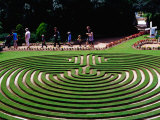 Maze at Cockington Green Gardens