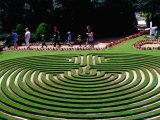 Maze at Cockington Green Gardens
