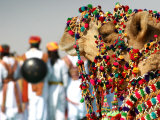 Camel Decoration at Desert Festival