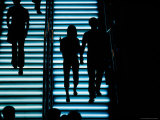Silhouetted People on Illuminated Staircase in Causeway Bay