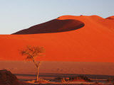 Red Color of Sossusvlei Sand Dunes after Sunrise