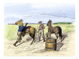 Pony Express Rider Changing Horses at a Relay Station