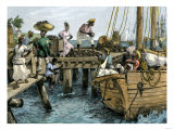 Natives Loading a Schooner with Coconuts at Kingston  Jamaica