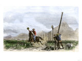 Pony Express Rider Passing Workers Raising Telegraph Poles  1860s