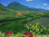 Overlooking a Verdant Green Valley with Hule&#39;Ia Stream and Ancient Menehune Hawaiian Fishpond