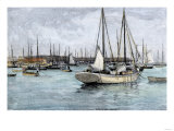 Sponge-Fishing Boats in Key West Harbor  1890s