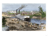 Steamboat Loading Cotton on Buffalo Bayou  Connected to the Gulf of Mexico  Houston  Texas  1870s