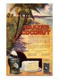 Bakers Coconuts Cakes Baking Cocoanuts  USA  1910