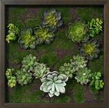 Faux Succulents Wall Decor I