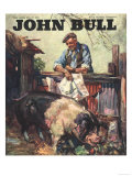 John Bull  Pigs Farms Farmers Magazine  UK  1946