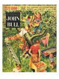John Bull  Picking Apples Fruit Magazine  UK  1950