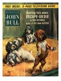 John Bull  Pets Magazine  UK  1952