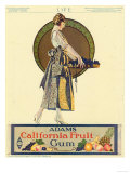 Adams California Fruit Gum  Chewing Gum Sweets Coles Phillips  USA  1920