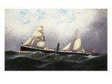 SS Niagara  1877