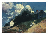 Houses on a Hill  1879