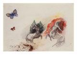 Battle of the Centaurs  Lutte Des Centaures
