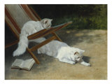 Two White Persian Cats with a Ladybird by a Deckchair  19th Century