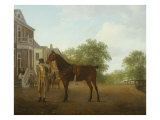 Gentleman Holding a Saddled Horse in a Street by a Canal  18th-19th Century
