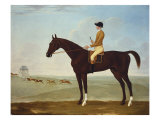 Chesnut Racehorse with Jockey Up on Newmarket Heath  18th Century