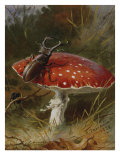 Stag Beetle on a Toadstool  1928