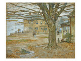 November  Cos Cob Pastel on Prepared Tan Board  1902