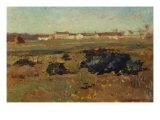 Landscape  1884
