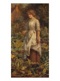 The Fair Gardener  19th Century