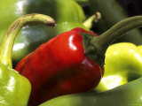 Red and Green Peppers Grocery Market