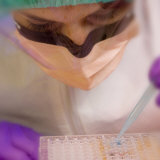 Medical Lab Scientist Using Microtiter Plate