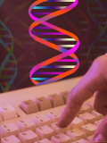 Conceptual DNA Research DNA Computers Finger Hand