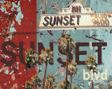 New Sunset Blvd