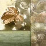 Zen Elements I