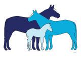 Blue Herd