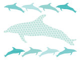 Seagreen Dolphin Family