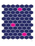 Navy Pink Trellis