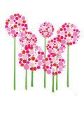 Pink Allium Reproduction d'art par Avalisa