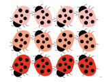 Red Ladybug Family