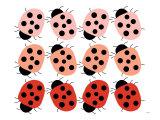 Red Ladybug Family