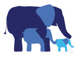 Blue Elephants