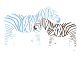 Blue Zebra
