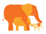 Orange Elephants