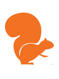 Orange Squirrel
