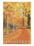 Connecticut  Fall Colors Scene