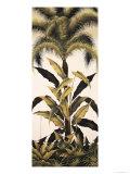 Antique Palm  no 9