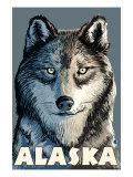 Wolf  Alaska