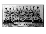 Detroit  MI  Detroit Tigers  Team Photograph  Baseball Card